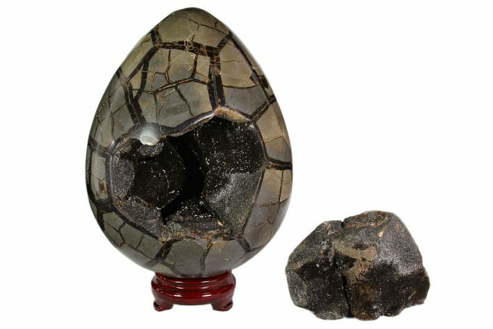 "9.2"" Polished Septarian Puzzle Geode - Black Crystals"