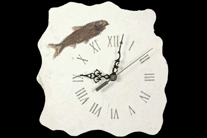 "9.7"" Tall Fossil Fish (Knightia) Clock - Wyoming"