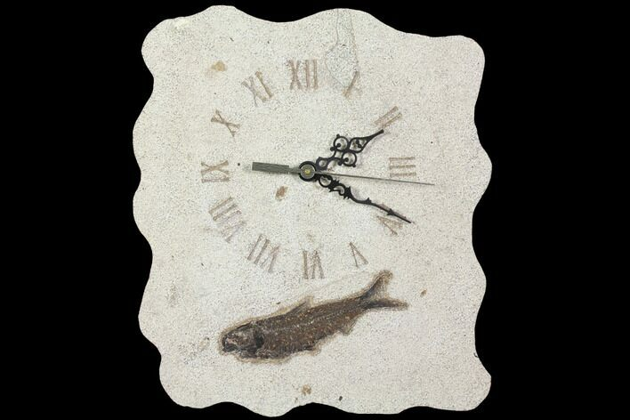 "11.0"" Tall Fossil Fish (Knightia) Clock - Wyoming"