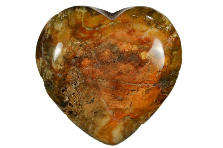 "1.6"" Polished, Triassic Petrified Wood Heart - Madagascar"