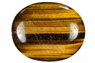 "Buy 2.5"" Polished Tiger's Eye Palm Stone - South Africa - #115552"