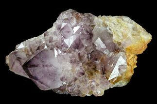 Quartz var. Amethyst - Fossils For Sale - #115386