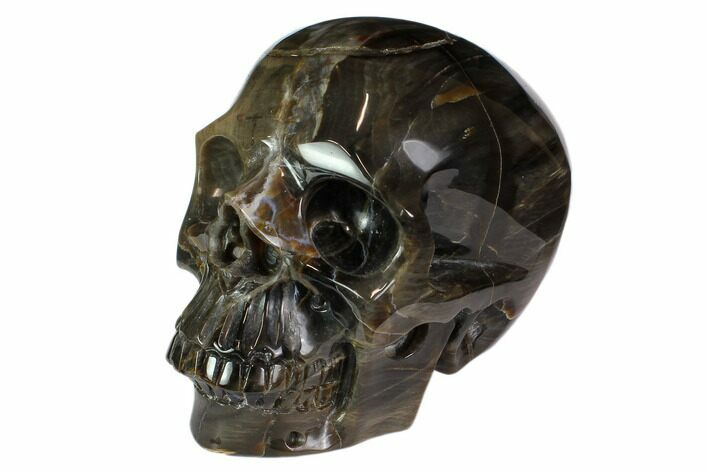 "5"" Realistic, Carved Petrified Wood Skull"