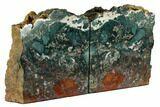"7.9"" Green & Red Jasper Replaced Petrified Wood Bookends - Oregon - #117223-1"