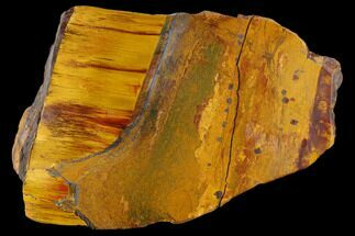 "4.9"" Marra Mamba Tigers Eye - Mt. Brockman (2.7 Billion Years) For Sale, #117179"