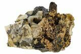 "2.1"" Smoky Quartz, Orthoclase and Aegirine Association - Malawi - #117502-2"
