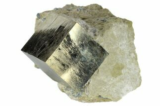 Pyrite - Fossils For Sale - #118245