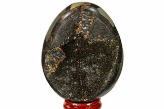 "Buy 3.1"" Septarian ""Dragon Egg"" Geode - Black Crystals - #118735"