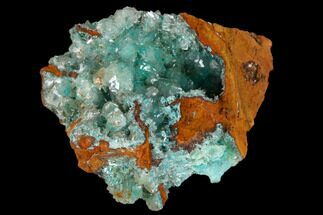 "Buy 1.9"" Calcite Encrusted Fibrous Aurichalcite Crystals - Mexico - #119194"