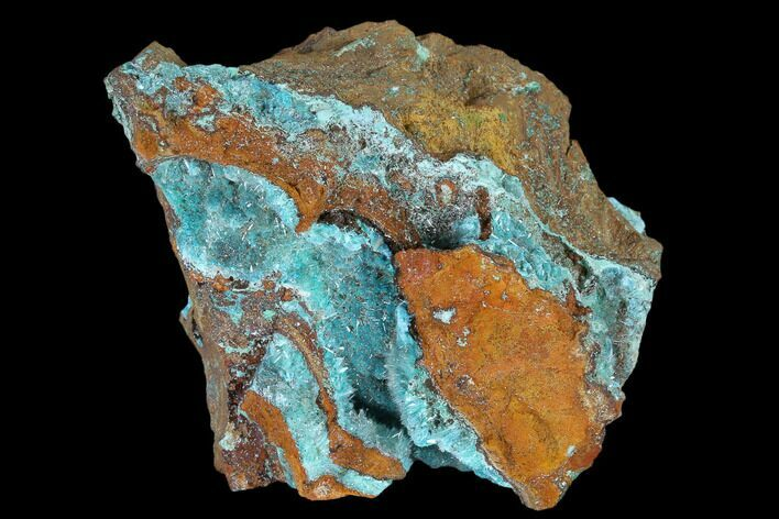 "2.3"" Fibrous Rosasite & Aurichalcite Crystal Association - Mexico"