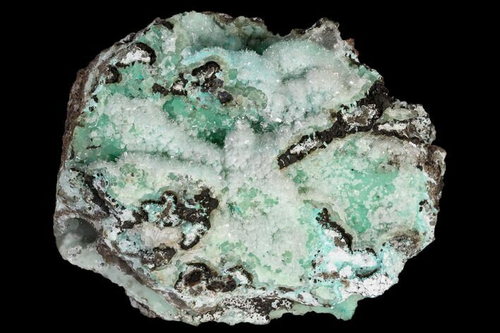 "3.6"" Hemimorphite Crystals on Green Smithsonite - Utah"