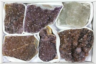 Quartz var. Amethyst - Fossils For Sale - #119328