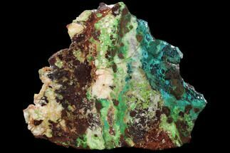 "4.4"" Chrysocolla & Malachite Slab From Arizona - Clear Coated For Sale, #119750"