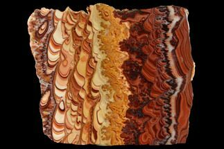 "6.1"" Polished Slab Of Rolling Hills Dolomite - Mexico For Sale, #120113"