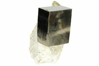 Pyrite - Fossils For Sale - #118272