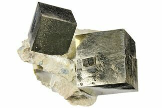 Buy Two Natural Pyrite Cubes In Rock - Navajun, Spain - #118249