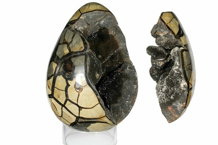 "Bargain, 9"" Septarian ""Dragon Egg"" Geode - Removable Section"
