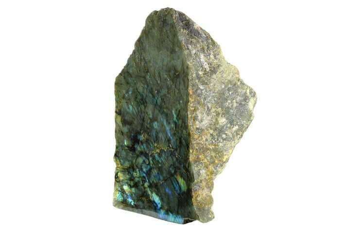 "11.9"" Tall, Single Side Polished Labradorite (17.4 lbs) - Madagascar"