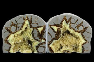 "Buy 4.7"" Wide, Crystal Filled Septarian Geode Bookends - Utah - #123835"