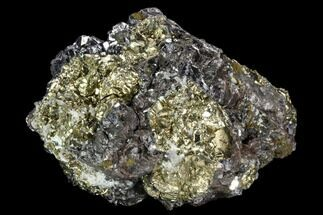 "3.4"" Galena, Chalcopyrite, Quartz and Pyrite - Peru For Sale, #124448"