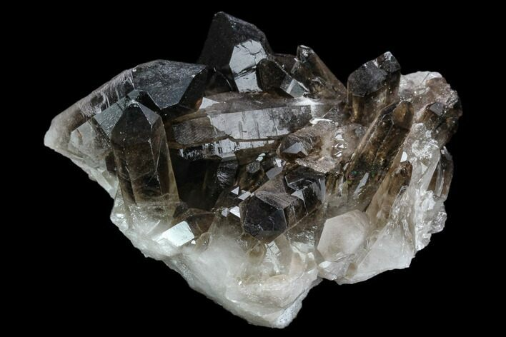 "4.2"" Dark Smoky Quartz Crystal Cluster - Brazil"