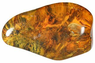 "Buy 1.7""  Polished Chiapas Amber (10 grams) - Mexico - #114892"