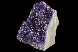 Quartz var. Amethyst - Fossils For Sale - #123795