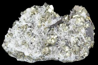"Buy 2.8"" Pyrite, Sphalerite and Quartz Crystal Association - Peru - #126604"