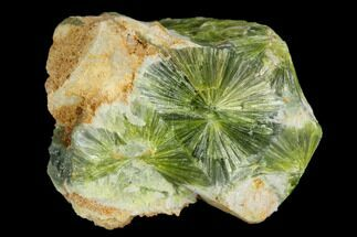 Wavellite - Fossils For Sale - #127134