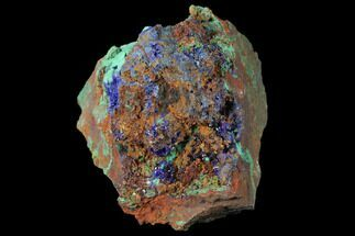 Azurite & Malachite - Fossils For Sale - #127518