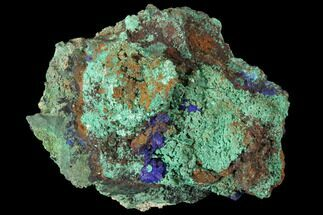 "Buy 4.4"" Sparkling Azurite and Malachite Crystal Cluster - Morocco - #127522"