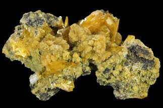 "1.8"" Windowpane Wulfenite and Mimetite - Mexico For Sale, #127412"