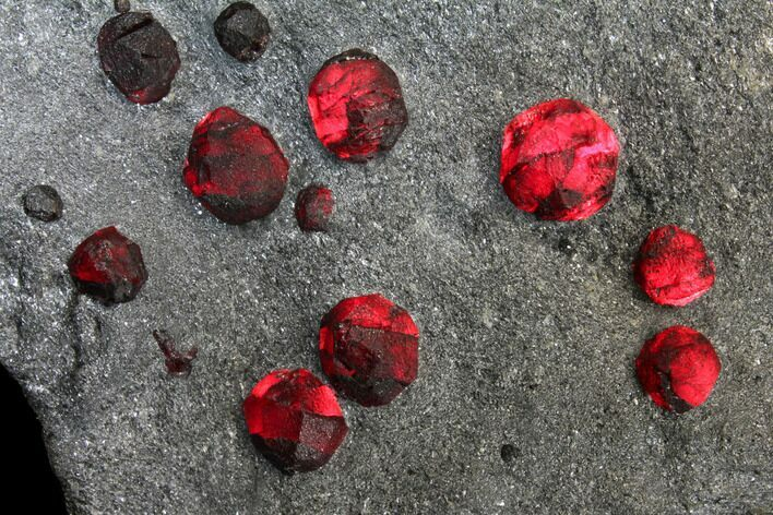 "5.8"" Plate of 27 Red Embers Garnets in Graphite - Massachusetts"