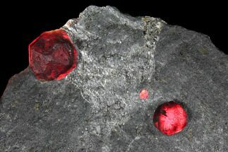 Buy Two Red Embers Garnets in Graphite - Massachusetts - #127783