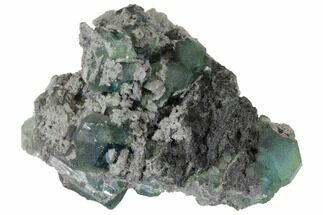 Fluorite & Quartz - Fossils For Sale - #128562