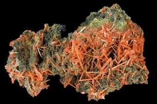Crocoite - Fossils For Sale - #127950