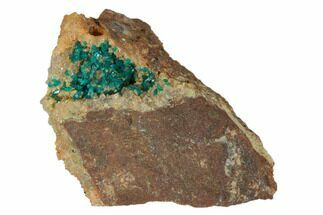"1.25"" Dioptase Crystals on Quartz - Namibia For Sale, #126932"