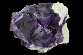 "Buy 5.4"" Purple Fluorite with Bladed Barite - Cave-in-Rock, Illinois - #128785"