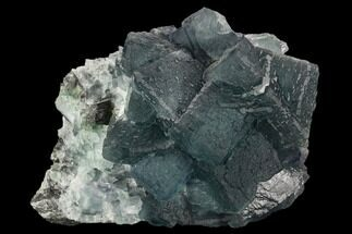 Fluorite - Fossils For Sale - #128937