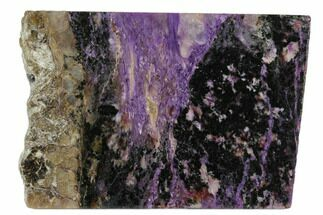 "Buy 4"" Purple Polished Charoite Slab - Siberia - #129082"