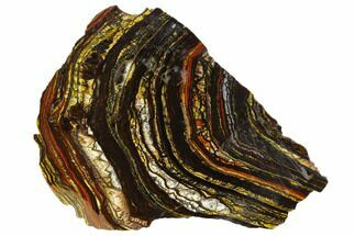 "4.8"" Polished Tiger Iron Stromatolite - 3.02 Billion Years For Sale, #129206"