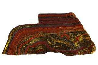 Tiger Iron Stromatolite - Fossils For Sale - #129213