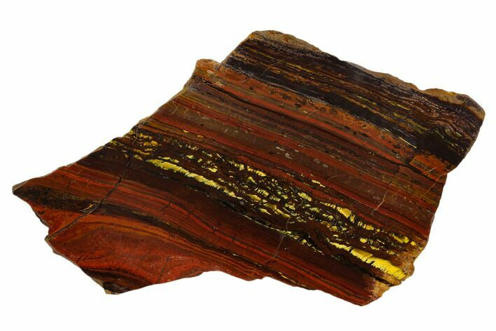 "4.6"" Polished Tiger Iron Stromatolite - 3.02 Billion Years"