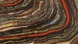 "11.3"" Polished Tiger Iron Stromatolite - 3.02 Billion Years - #129307-1"