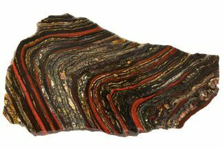 "10.3"" Polished Tiger Iron Stromatolite - 3.02 Billion Years For Sale, #129452"