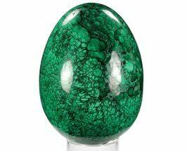"Buy 5.2"" Tall, Polished Malachite Egg - Very Flowery - #129538"