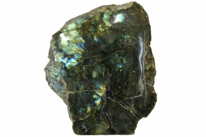 "6.3"" Tall, Single Side Polished Labradorite - Madagascar"