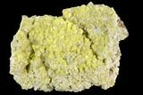 "3.5"" Sulfur Crystal Cluster on Matrix - Nevada - #129749-1"