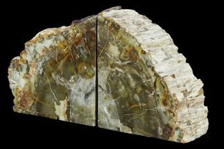 "Buy 5.3"" Tall, Colorful Petrified Wood Bookends - Madagascar - #129940"