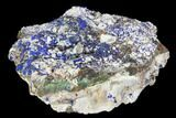 "3.3"" Sparkling Azurite and Malachite Crystal Cluster - Morocco - #128171-1"